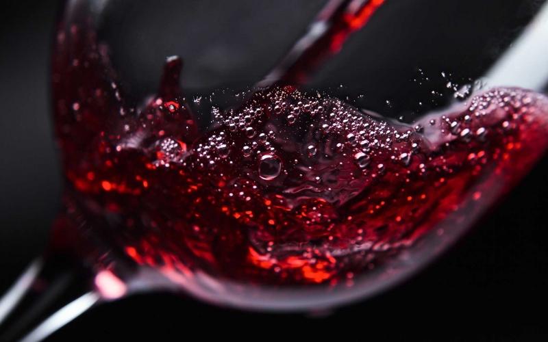 sélection vins bordeaux bègles cave